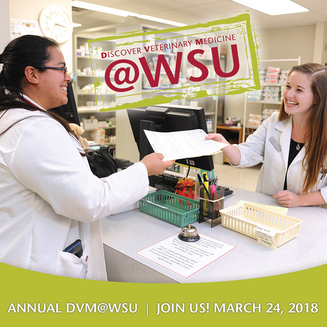 DVM at WSU Promotional Image